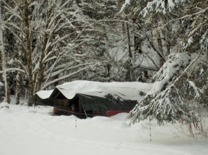 snow 2-14