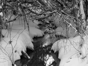 snow 2-14l